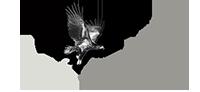 Ali Şenel Logo